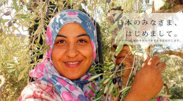 パレスチナのアラード有機エキストラバージンオリーブオイル